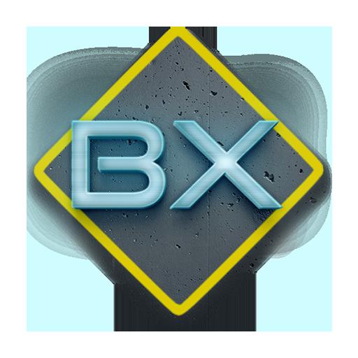 categoria-BX-AutoExpert-Valcea-scoala